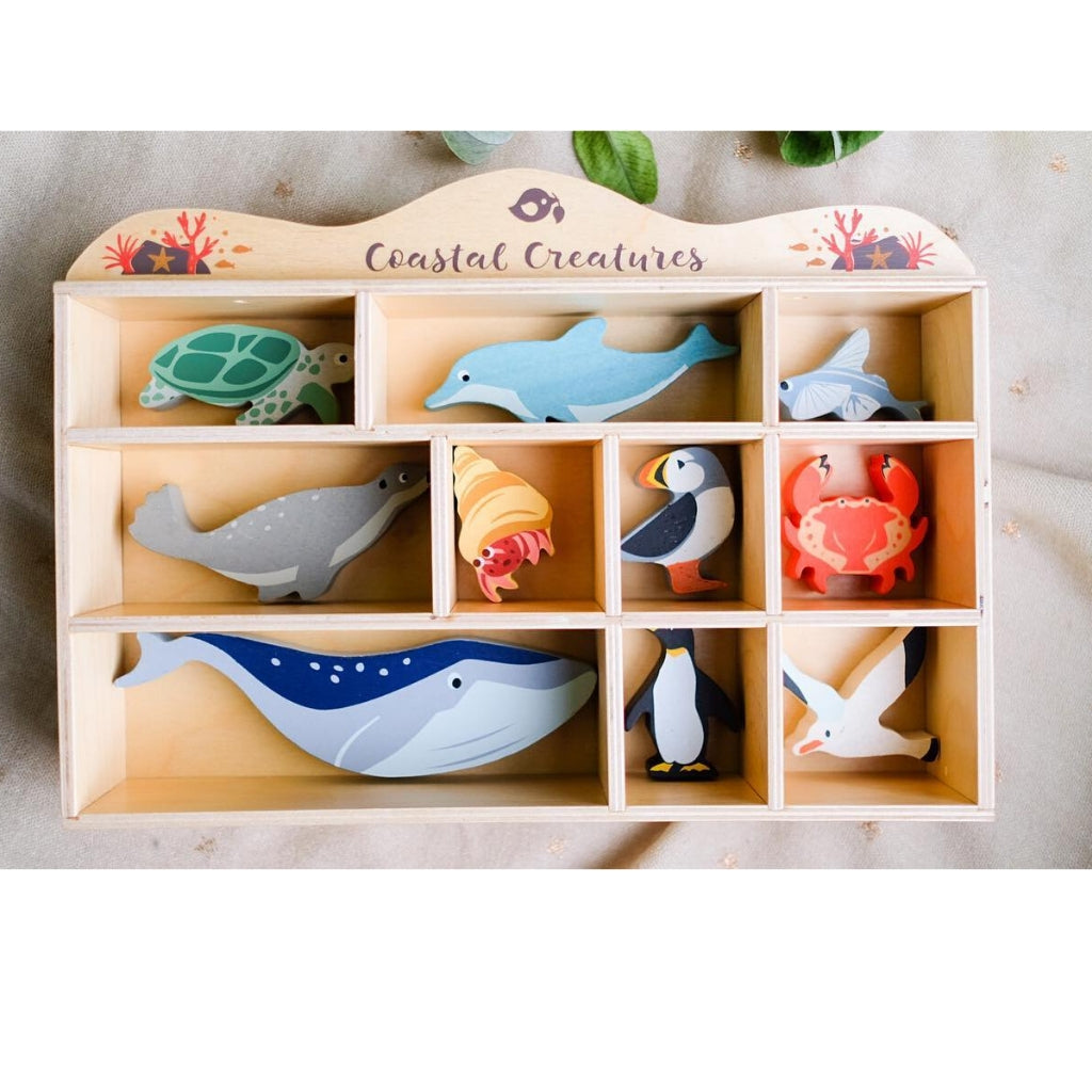 Tender Leaf Coastal Set with Display Box - UrbanBaby shop