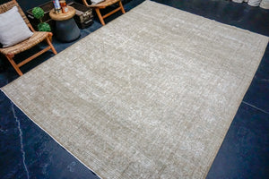8'6 x 11'5 Classic Vintage Rug Muted Champagne Beige + Blue Carpet