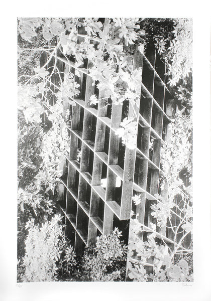 Modernist Buildings Trellis