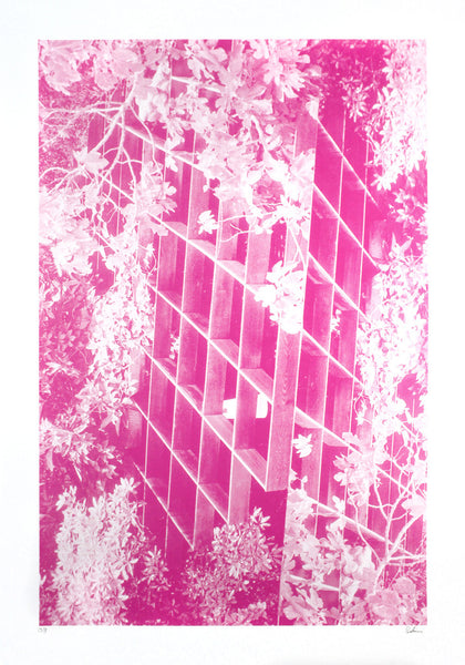 Modernist Buildings Trellis Pink