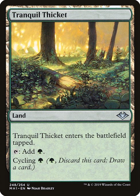 Tranquil Thicket (Foil)