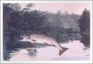 Leaping Trout, 1889 by Winslow Homer