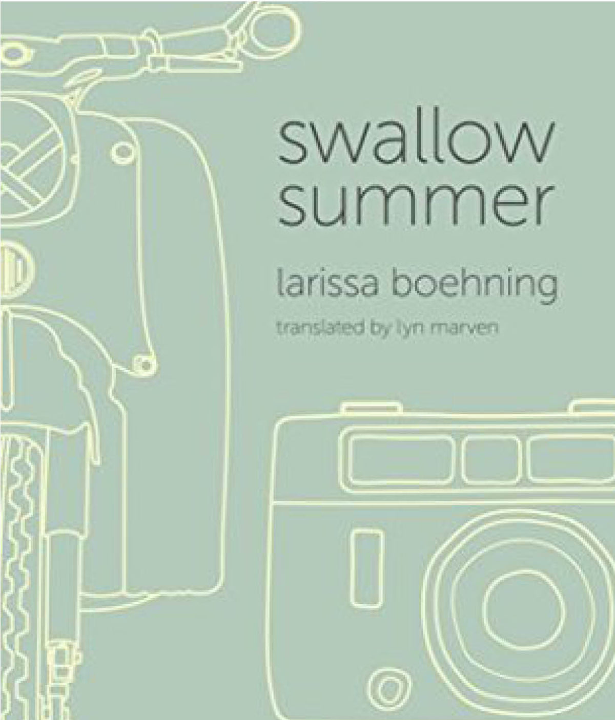 Swallow Summer by Larissa Boehning