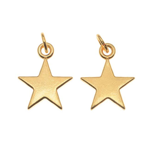 Five Point Star Charm