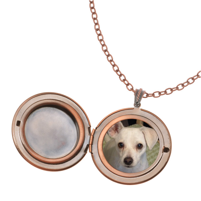 Retired - Brighton Locket