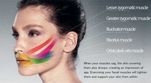 How To Use Face Slimming Muscle Fitness Training Tool