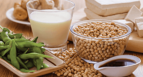 Soy Protein Foods