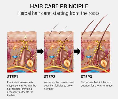 How Does Herbal Hair Care Works