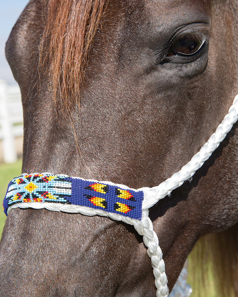 Professional's Choice Cowboy Braided Halter