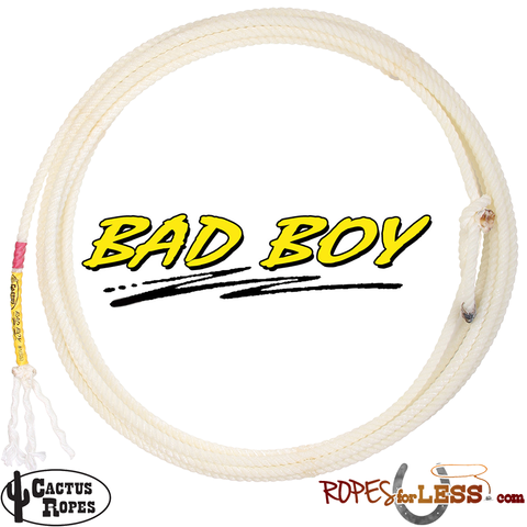 Cactus Bad Boy 36' Heel Rope