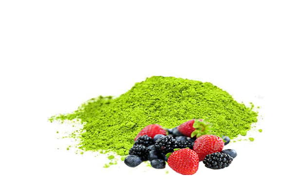 Organic Fruit Punch Matcha