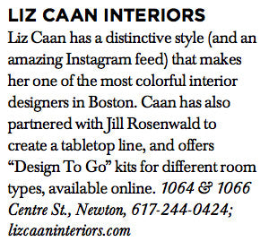 Liz Caan Interiors in Boston Common Magazine Spring 2017