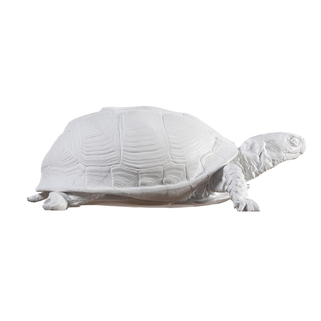 White Turtle Box