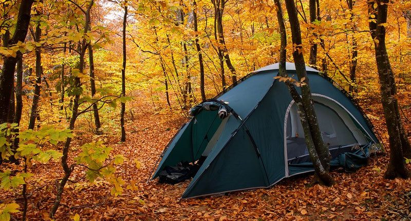 BEST FALL HIKING ESSENTIALS AND TIPS TO MAKE YOUR NEXT TRIP YOUR BEST TRIP