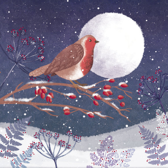 Winter Robin Christmas Card
