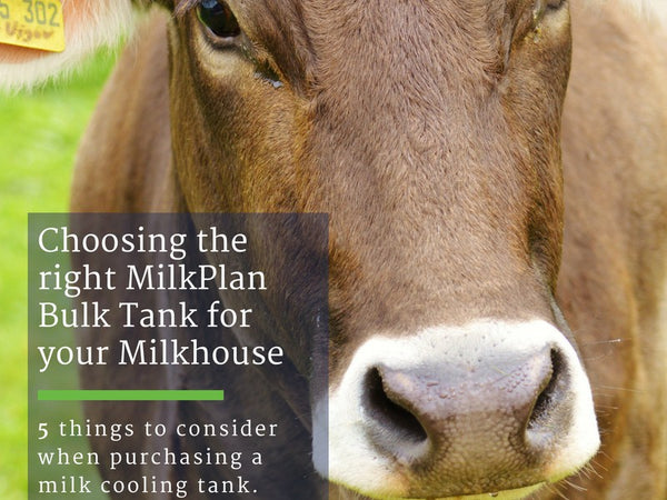 Choosing the Right Bulk Tank for your Milkhouse