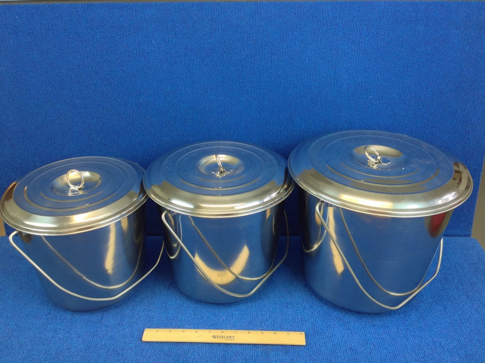 Lightweight Stainless Steel Milk Pail with Lid