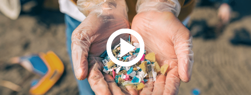 what happens with microplastics in the ocean