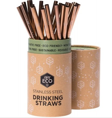 EVER ECO Stainless Steel Straw - Straight