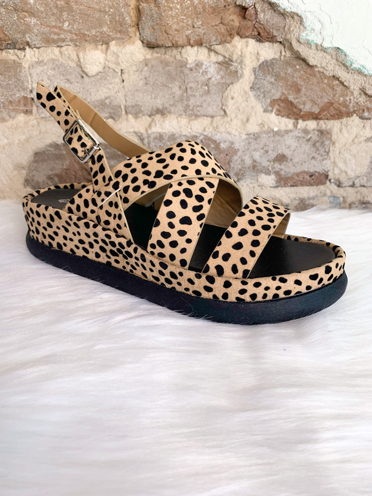 Platform Sandals: Tan Black Leopard Suede