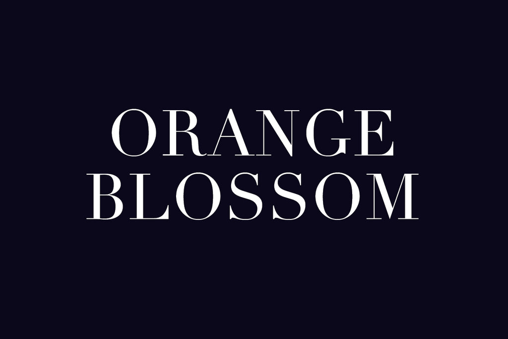 Plant Potential: Leanne Citrone - Ode to Orange Blossom
