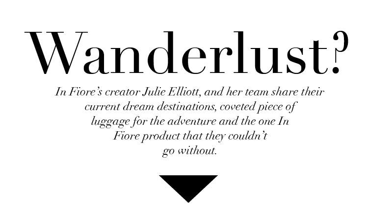 TRAVEL_LUGGAGE_Wanderlust