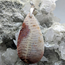 Load image into Gallery viewer, fossilised coral pendants