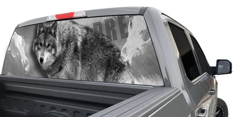 COYOTEWINDOWGRAPHIC