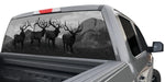 BULL ELK ON THE SKYLINE WINDOW GRAPHIC