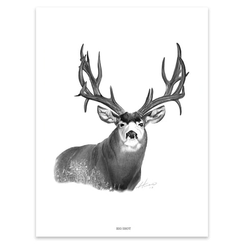 """BIG SHOT"" MULE DEER PRINT"