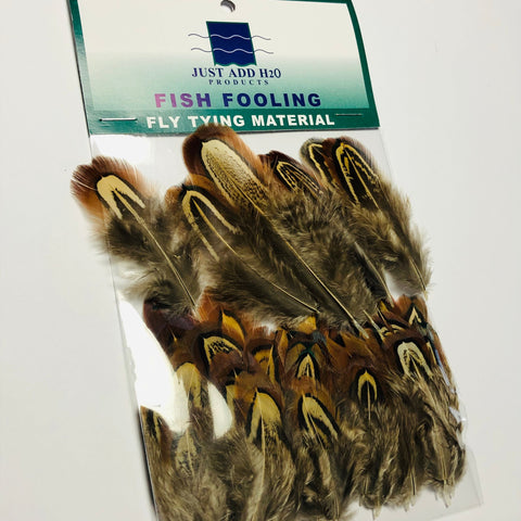 Fishient Group Cock Pheasant Shoulder Feathers