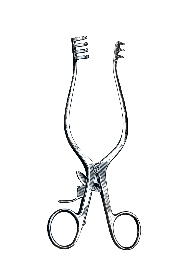 "Weitlaner Retractor, 3 x 4 Sharp Prongs, 9 1/2"" (24 cm) - Garana Industries"