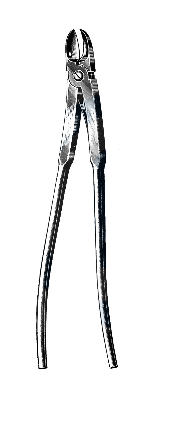 "Bethune Rib Shears 13 1/2"" (34 cm) - Garana Industries"