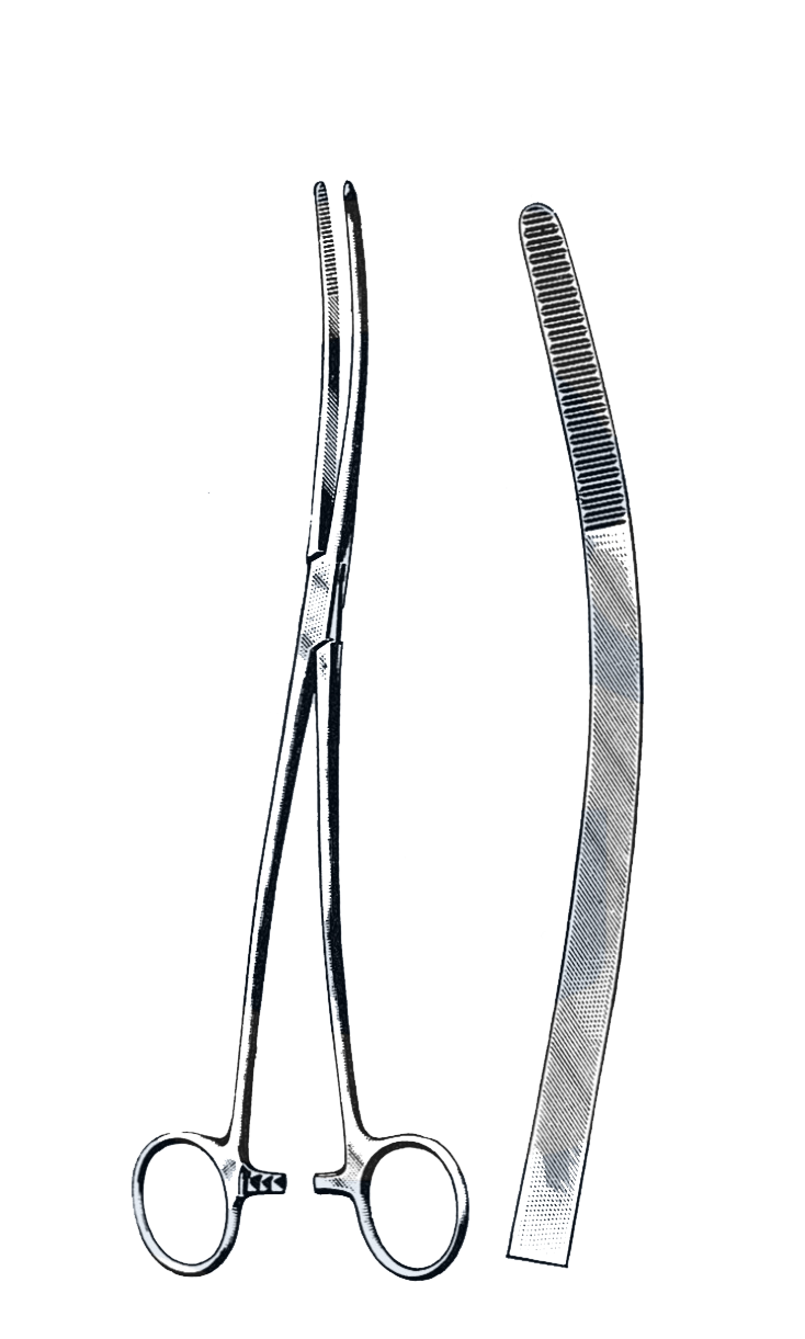 "Bozeman Uterine Dressing Forceps, Curved 10"" (25 cm) - Garana Industries"