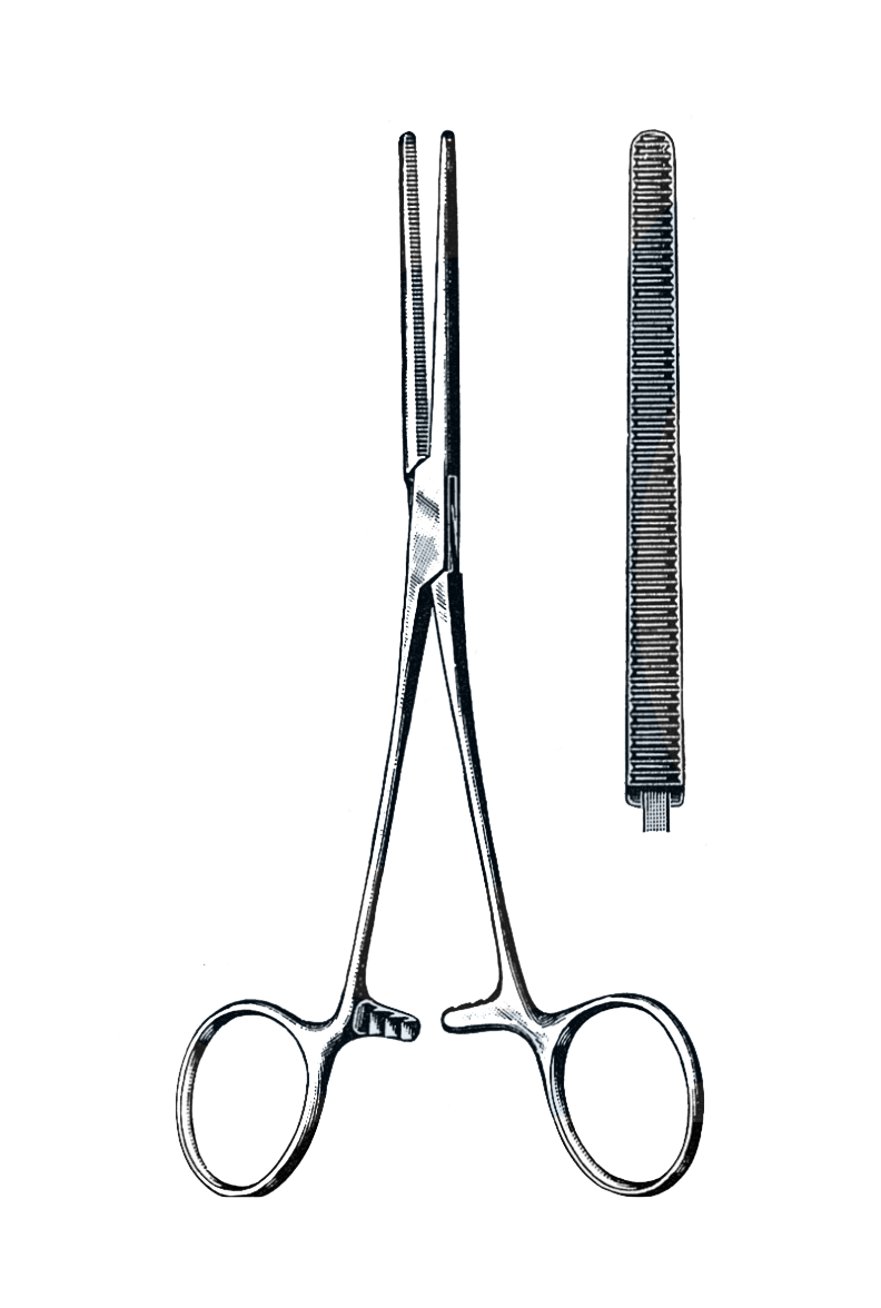 "Rochester-Pean Forceps Straight 10"" (25 cm) - Garana Industries"