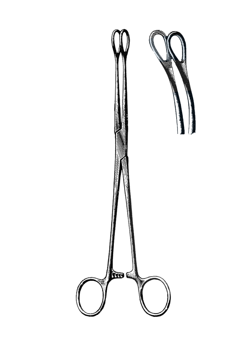 "Foerster Sponge Forceps, Serrated, Curved 9 1/2"" (24 cm) - Garana Industries"