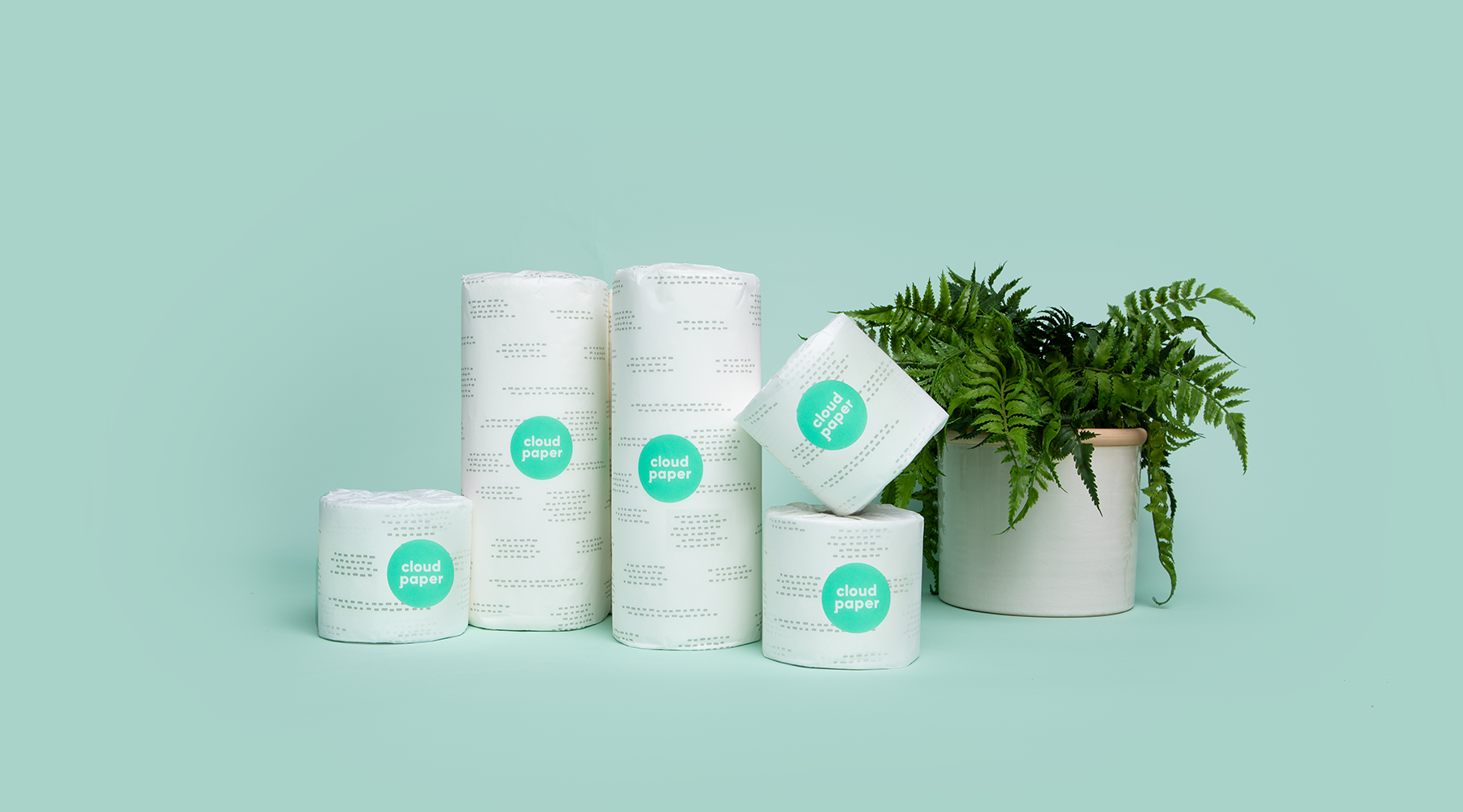 bamboo paper towels by cloud paper