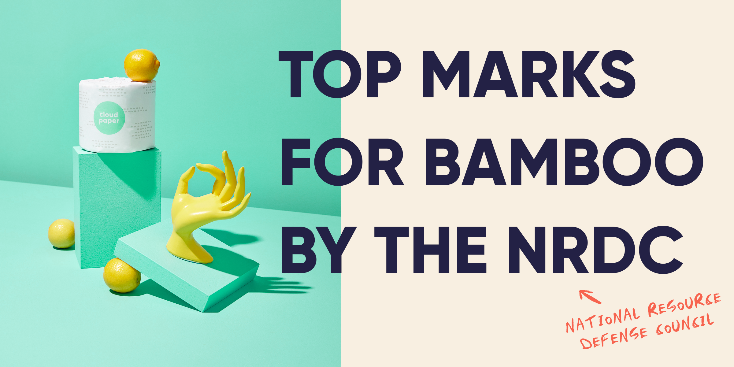 Cloud Paper received the highest score possible for bamboo brands