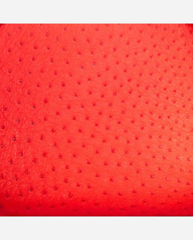 SUSAN PANEL<br /> (for Margot Day Bag)<br />Persimmon Ostrich