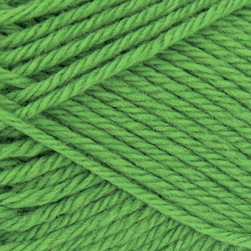 Load image into Gallery viewer, Rowan Superwas Worsted - Olive