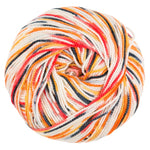 Bandit Sock yarn - Scamp Sprinkles