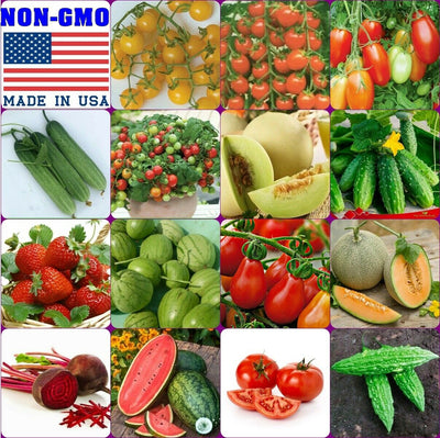 15 Varieties Emergency Survival Vegetable Fruit Seeds NON-GMO Heirloom FREE SHIPPING + GIFT