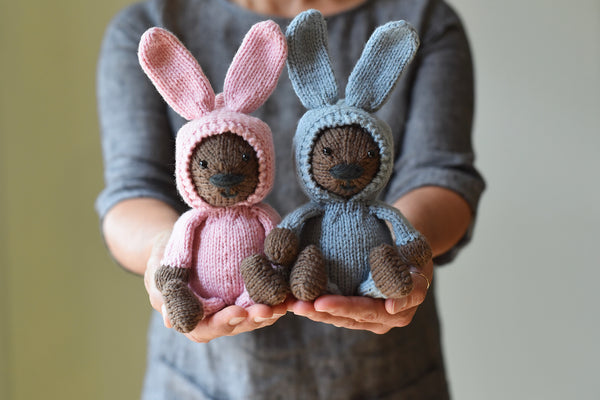A Bear and A Bunny Suit by Susan B. Anderson