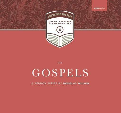 Surveying the Text VI: Gospels