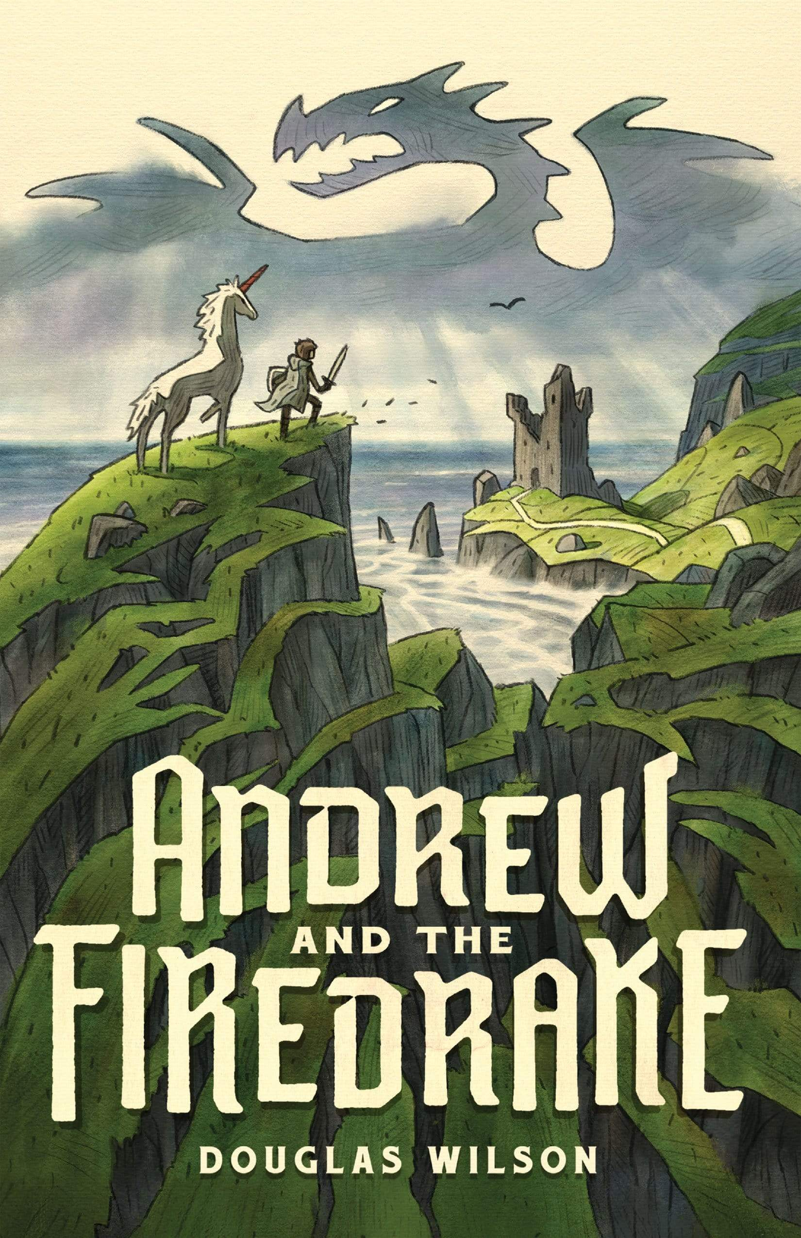 Andrew and the Firedrake (Hardback)