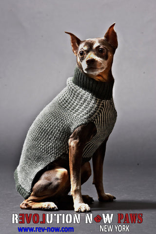 Mixed Media Paws Turtle Neck Sweater