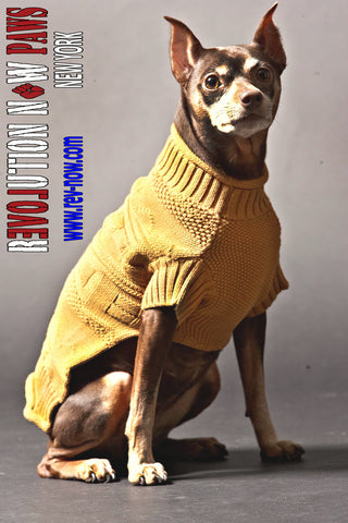 Mixed Media Paws Lambswool Mock Neck Sweater