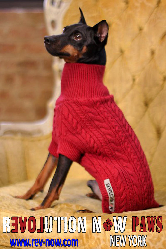 Variegated Cable Paws Turtle Neck Sweater