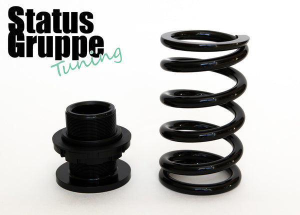 2001-06 BMW E46 M3 SGT-SRS Rear Spring assembly