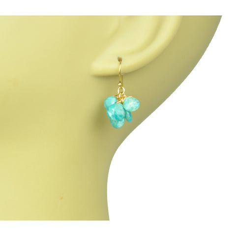 Amazonite Cluster Earrings - Stylemindchic Boutique - Curated Collections - 2
